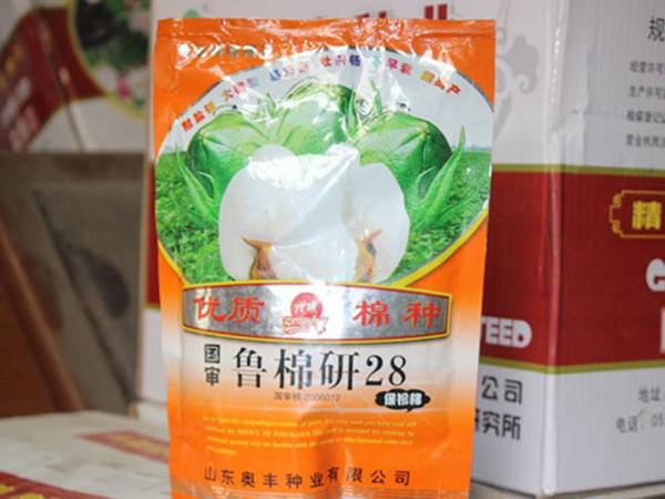 棉花种子鲁棉研28