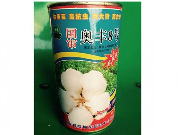 棉花种子奥丰8号